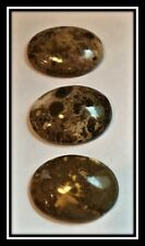Cabochon, eagle eye agate (natural), 32x24mm, 3 cabs
