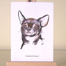 Chocolate Chihuahua oozes with delicious personality thru ACEO art card drawing