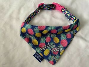 Simply Southern Sweet & Sassy Dog Collar with Matching Bandana for Medium Dogs