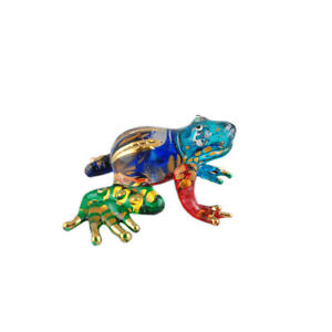 Glass Frog Small