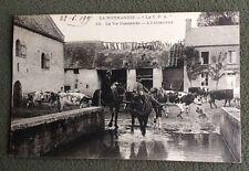 CPA. LA VIE NORMANDE. 14 - A l'Abreuvoir. 1905. Chevaux montés. Vaches.