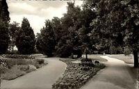 Bad Krozingen Schwarzwald Ansichtskarte ~1950/60 Partie im Kurgarten Grünanlagen
