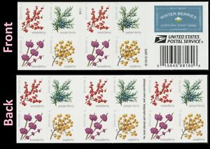 US 5415-5418 5418b Winter Berries forever booklet (20 stamps) MNH 2019