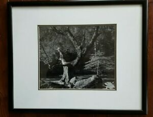 ANSEL ADAMS Early Morning, Merced River 17x21 Double Matted + Framed 10x12 Print