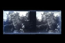 Forêt de Fontainebleau Amateur Mode Plaque stéréo NÉGATIF 45x107mm ca 1910