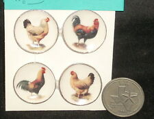 Miniature Rooster Chickens Plate Platter Plates Dishes Dish #CDD293 Kitchen Hen