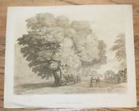 F. C. Lewis Engraving Claude Lorrain In His Majesty's Collection Landscape Tree