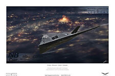F117 Nighthawk (Stealth Fighter) Gulf War 1 Digital Art Print