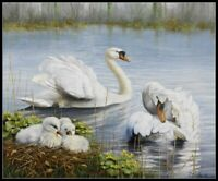 Swans - Chart Counted Cross Stitch Patterns Needlework DIY DMC Color