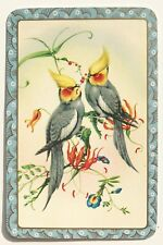 Vintage Swap/Playing Card - COLOURFUL BIRDS - Decorative Blue Border - Exc. Cond