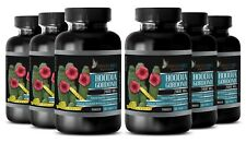 Pure Hoodia Gordonii Cactus 2000mg Natural Weight Loss - 6 Bottles 360 Capsules