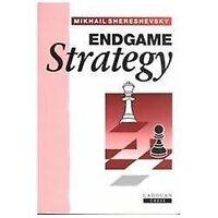 Endgame Strategy (Paperback or Softback)