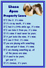 Lhasa Apso - New - Dog fridge magnets New Gift - Free UK p/p