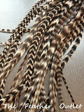 """Lot 25 Grizzly Feathers Hair Extensions Real Natural Striped 8-10"""" Long BW Fluff"""