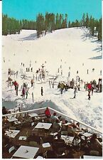 """Badger Pass Ski Slope Yosemite National Park, California"" Postcard FREE US SHIP"