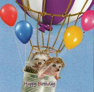HAPPY BIRTHDAY GREETING CARD BY TRACKS - HEDGEHOGS - GLITTERY - FREE P&P