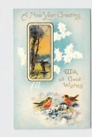 PPC POSTCARD NEW YEAR GREETING ROBINS HOLLY SNOW GOLD EMBOSSED