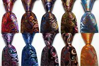 New Classic Ties Paisley JACQUARD WOVEN 100% Silk Men's Tie Necktie