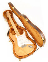 Douglas EGC-450 ST Brown / Gold Case fit Fender Stratocaster Tele & Rickenbacker