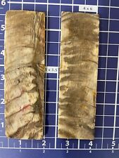 """Rough Textured 1-pair (Real Ram horn )knife Scales 1 1/2�x 5"""" X1/4� Muilty Color"""