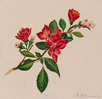 Georg WITTEMANN (1811-1899), Blumenbukett mit roten Blüten, Aquarell