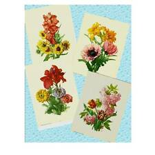 Flowers by Seguy - Set of 4 Full Colour Prints
