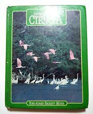 Investiguemos en Ciencia Sexto Grado Puerto Rico 1985