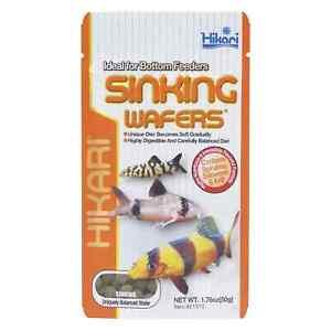 Hikari Sinking Wafers 50g Tropical Catfish & Loach Sinking Wafer Disc Fish Food