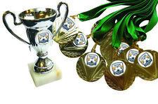 Futsal winners trophy cup, plus 12 medals. Free engraving