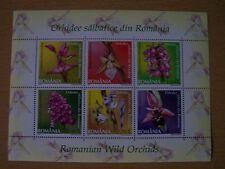 Rumania, 2007 orquídeas M/hoja de 6 Vals, Gato £ 12,U/Menta, excelente.