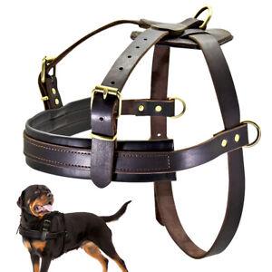 Genuine Leather No Pull Dog Harness Heavy Duty Large Training Vest L-XL Pitbulls