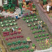 BUSCH 1213 H0, je 8 Rotkohl-, Weißkohl-, Blumenkohl-, Brokoli- und 16 Salatköpfe
