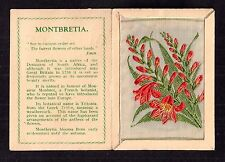 Kensitas silk flower Medium MONTBRETIA folder C