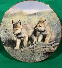 "Collector Plate Wolf Pups. ""Pals"" from ""Nature's Playmates"" ©1992 Coa & Box Vgc"