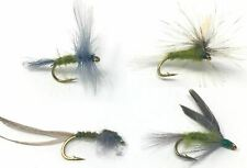 Blue Wing Olive Variety- 24 Wet and Dry Flies - Sizes 12,14,16,18 (2 of Each)