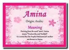 Amina Personalised Name Meaning Jumbo Magnet