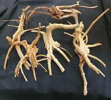 Aquarium Terranium Spiderwood Bogwood Ornaments 15-30cm Roots driftwood x5