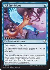MTG Magic DOM - (x4) Arcane Flight/Vol ésotérique, French/VF