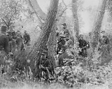 New World War I WWI 8x10 Photo - French infantry scouting patrol in the woods