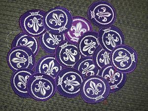 Current Issue Boy Scout World Crest Scout Emblem Patch