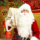 Quality Santa Claus Father Christmas White Wig Beard Adult Christmas Fancy Dress