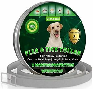 Natural Flea Treatment for Dogs – 8 Months Flea and Tick Collar Dog Protection