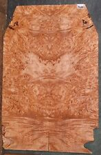 Birdseye Maple Burl Wood Luthier 5A Instruemtn Grade Guitar Top set #7099
