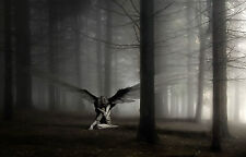 Large Framed Print - Gothic Angel Sat in a Dark Eerie Forest (Picture Poster Art