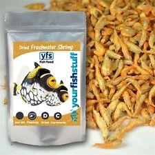 Sun Dried Freshwater Shrimp Bulk Fish Food 1/4 LB