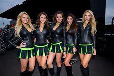 NASCAR SUPERSTARS THE MONSTER ENERGY GIRLS  8X10 PHOTO W/BORDERS