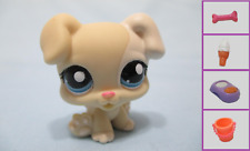 Littlest Pet Shop Dog Baby Boxer 1706 and Free Accessory Authentic Lps