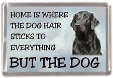 "Flatcoated Retriever Dog Fridge Magnet ""Home is Where"" Design by Starprint"