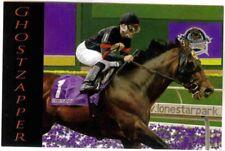 GHOSTZAPPER,THOROUGHBRED HORSE RACING,ROBERT CLARK POSTCARD,'04 BREEDERS CUP