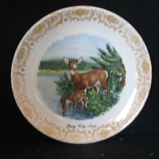 """Story City, Iowa DEER Collector Plate by Homer Laughlin Best China 8"""""""